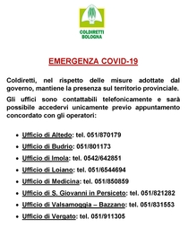 Emergenza Covid – Bologna