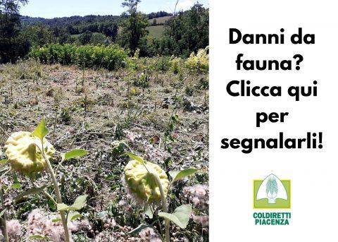 Danni da fauna – Piacenza