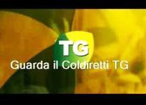 Coldiretti TG – Ravenna Ferrara