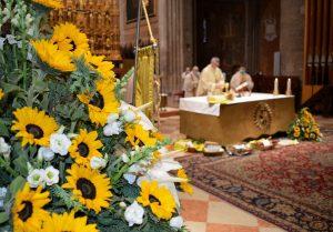 celebrazione eucaristica Ringraziamento Piacenza 2020